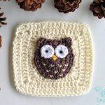 Woodland Owl Square free crochet pattern