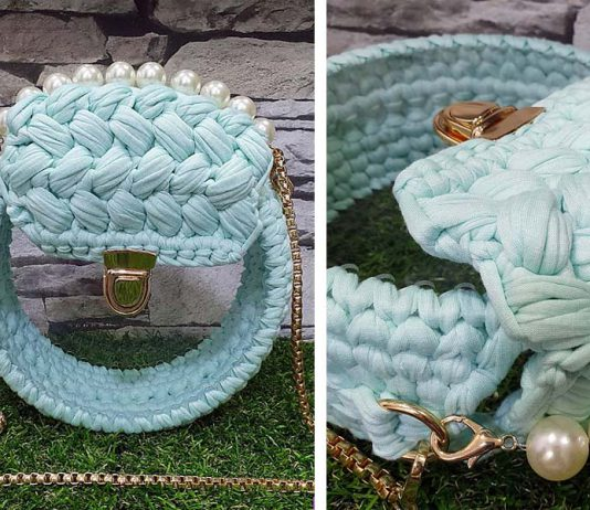 Crochet Clear Case Bag Free Pattern
